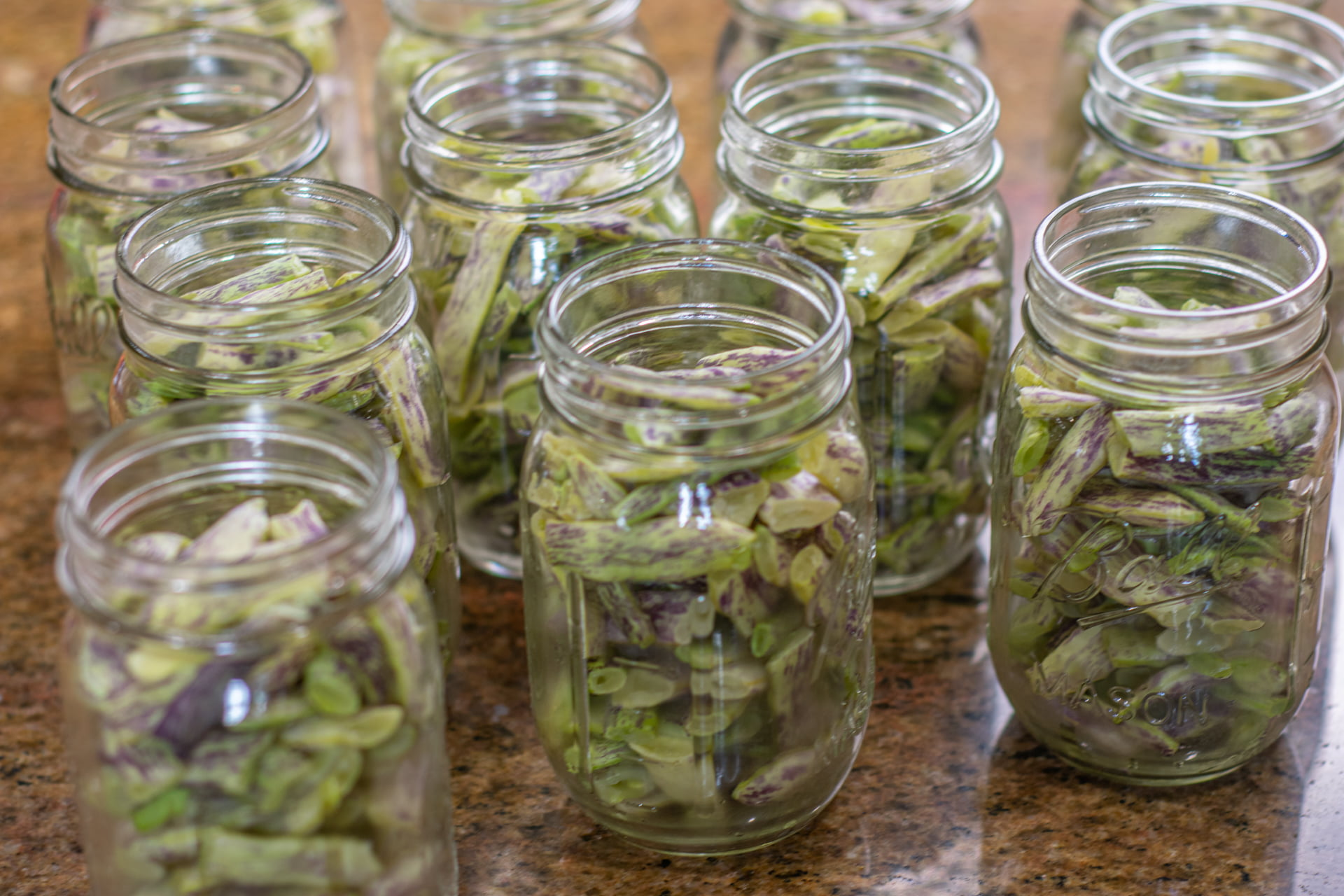 Beans in jars being prepared for canning