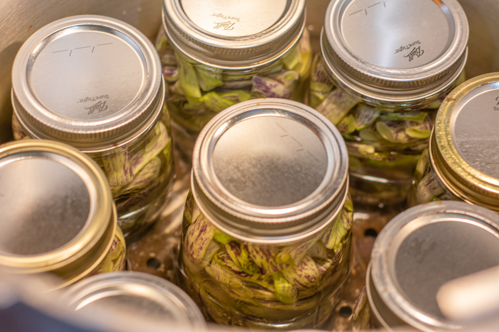 Green beans in canner ready for processing